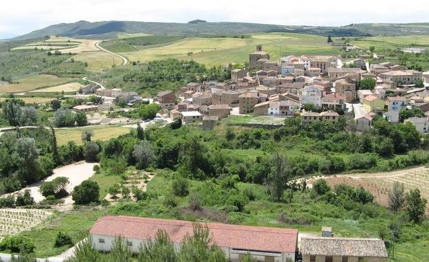 Dia del Valle (2011)